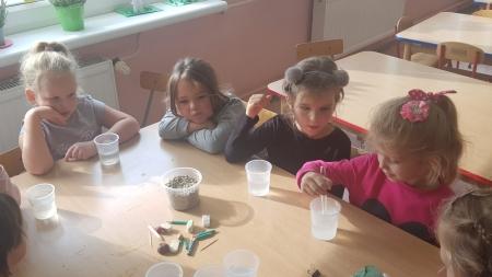 Doświadczenia w grupie 5 i 6-latków