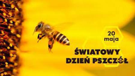 Światowy Dzień Pszczół